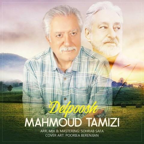 دانلود آهنگ جدید محمود تمیزی دلپوش