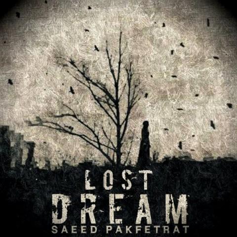 دانلود آهنگ جدید سعید پاک فطرت رویای گمشده