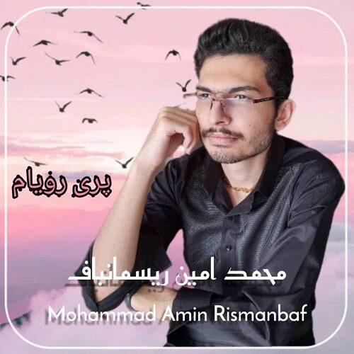 دانلود آهنگ جدید محمد امین ریسمانباف پری رویام