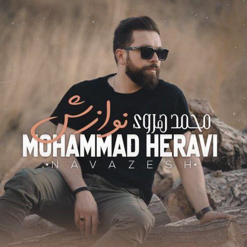 دانلود آهنگ جدید محمد هروی نوازش